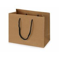 Пакет подарочный Kraft XS, 23x19x10 см