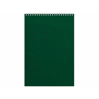 Бизнес - блокнот Альт А4 (198 х 285 мм) Office 60 л., зеленый